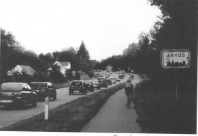 5/2006 Overskriften er: Køerne venter på Beder-Beringvejen – det ligner nu mest biler!