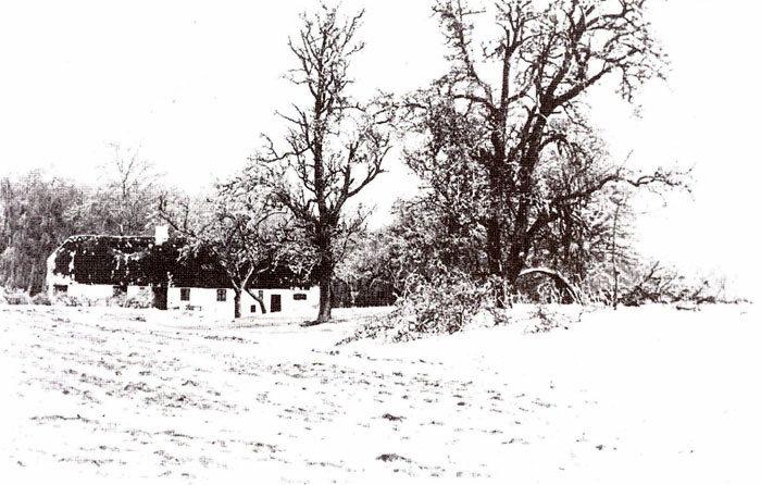 """GI. Mariendal. Ejendommen tilhørte gården """"Mariendal"""". Den var bopæl for husmændene og en del af deres løn. Der var ca. 2 tdr. land til, og der var plads til et par køer, en hest og et par grise. Ejendommen, der nu er nedrevet, lå sydøst for den parkeringsplads, der er i sydkanten af Fløjstrup Skov. Der står stadig et asketræ og et par pæretræer, som hørte til ejendommen."""