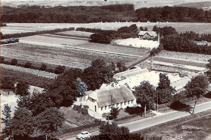 Et Iuftfoto fra omkring 1955 taget af Beder Landevej med frit udsyn over landskabet mod nordvest. l forgrunden ses Johannes Kolds gartneri. Stuehuset er formentlig fra 1855. og således ét af de ældste huse i Beder. Gartner Kold købte det i 1941. Bagved ses Rasmus Christensens ga rtneri, som de købte i 1942 Der blev drevet gartneri på jorden. indtil den blev udstykket omkring l979.