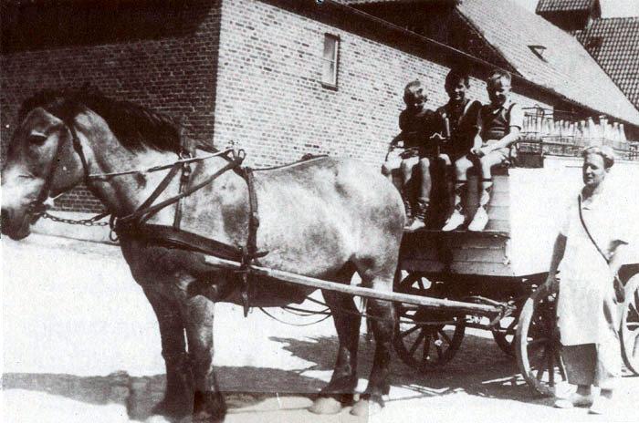 Malling mejeri omkring 1953, mælkehandler Niels Peter Holm med sin mælkevogn. Som man kan se, havde vognen træhjul med jernring omkring, og den blev trukket af én hest. Inde i kassen, der var afkølet med isblokke, var de følsomme varer som fløde, mælk og smør anbragt, mens de øvrige varer var på taget. De flydende varer var i mælkeflasker, som på dette tidspunkt var klare. Da man fandt ud af, at solen kunne skade mælken, fik den solbriller på. Den kom i brune flasker. Drengene på bukken kender arkivet ikke.