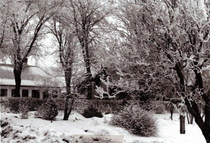 """Et smukt Vinterbillede taget fra Beder Gartnerskole i 1934. I baggrunden ses bødker Vilhelm Pedersens hus, som børnene på gartnerskolen kaldte for """"Marens mors Hus""""."""
