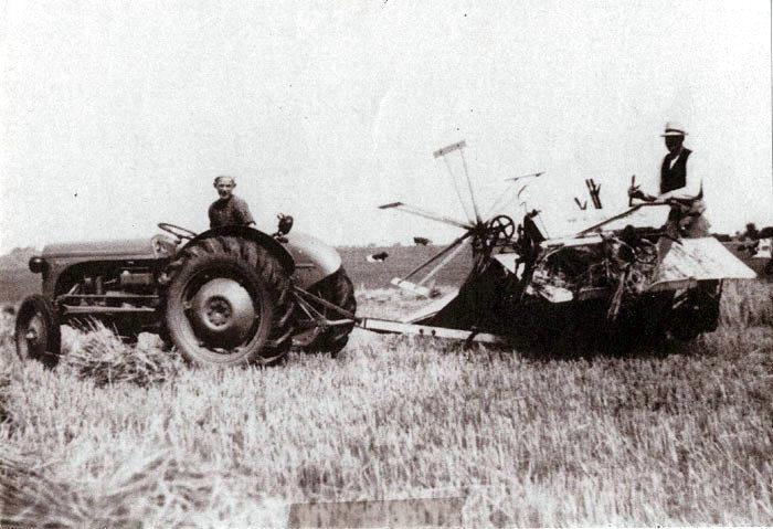 Søren A Hansen og søn høster Holmskovgårds marker, Tusetvej, i 1951. Hestene, der førhen trak selvbinderen, er blevet udskiftet med en traktor.