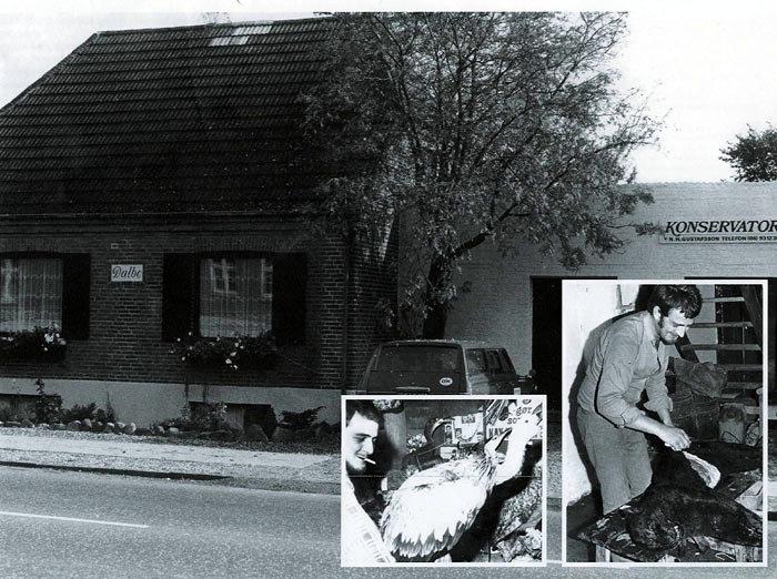 Billede 1: Bredgade 91, Malling, hvor N. H. P. havde forretning og værksted til 2007. Huset er opført i 1930 og var først ejet af malermester Alfred Dagøe. Foto ca. 1970. Bilen er en Toyota Crown Stationcar. Billede 2: N. H. P. blandt et udvalg af de udstoppede dyr i forretningen. Foto ca. 1970. Billede 3: N. H. P. ses på billedet i færd med at flå den sorte panter, der var sluppet ud af Ålborg Zoo og måtte aflives. Foto 1971.